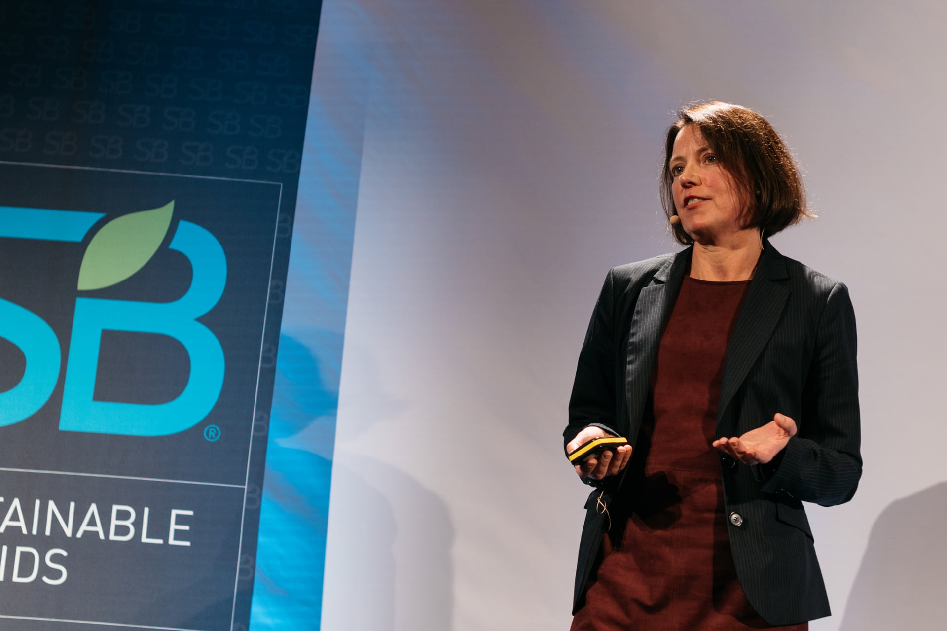 SB'16 Copenhagen Keynote / A Market-Leading Case Study in Purpose-driven Cross-Industry Collaboration