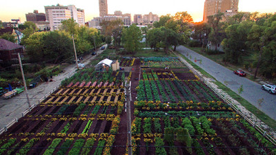 Transformational Collaboration: How Brands Are Helping to Create the US' First Sustainable Urban Agrihood