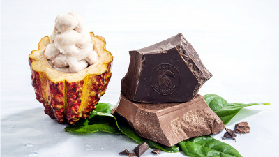 New Chocolate, Ingredients from Barry Callebaut Utilize Whole Cacao Fruit