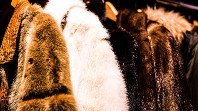 DuPont-Stella McCartney Partnership Yields World's First Bio-based Faux Fur