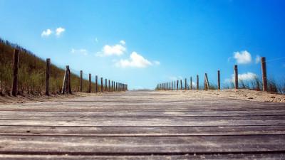 The 3 Pillars of a Conscious Organisation