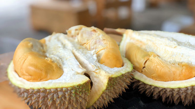 There's a Powerful New Use for Waste from This Incredibly Stinky Fruit