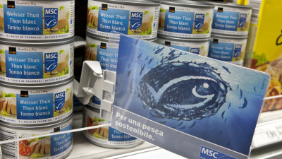 MSC Report Shows Sustainable Tuna Success asGlobal Demand Soars