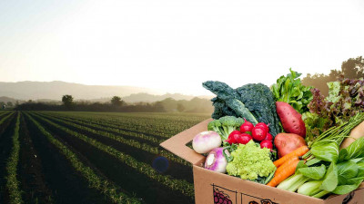 Trending: Public, Private Sectors Rallying to Reduce COVID-Fueled Food Waste