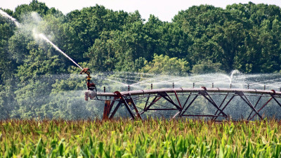 Scarcity Breeding Increasingly Innovative Water-Saving Strategies in Agriculture
