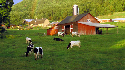 Repurposing Farm-Based Food Waste Provides Pathway to a Healthier Planet