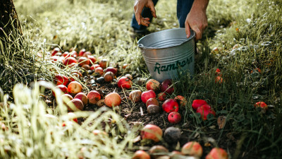 This Cidery Is Restoring Biodiversity While Reviving Traditional Cider-Making