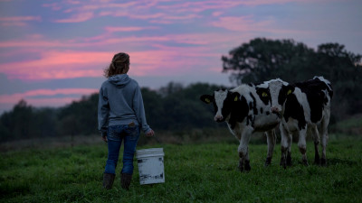 Starbucks, Unilever, Dairy Farmers of America on Their Food-Waste-to-Energy Alliance