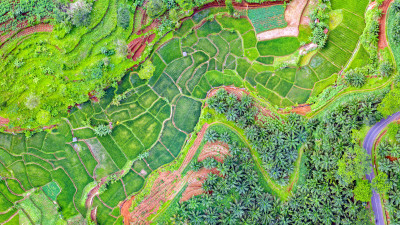 New Tool Keeps Sky-High Eye on Sustainable Agriculture's geoFootprint