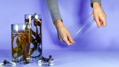 Trending: Scalable, Circular Solutions Promise to Revolutionize Plastic Packaging