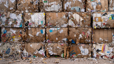 Recyclops Raises $3M Seed Round To Bring Recycling Where It Doesn't Exist