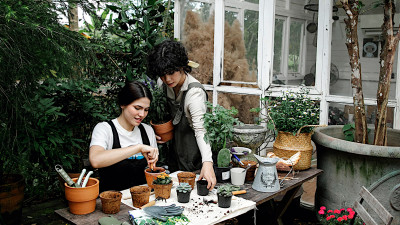 For Peat's Sake: Back to the Roots Equips Home Gardeners with Climate-Friendly Soil