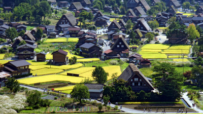 Why Shirakawa Village Is Considered One of the World's 'Top 100 Sustainable Destinations'