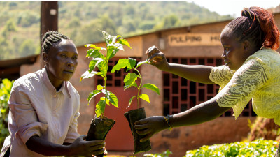 1.8M Fairtrade Farmers to World Leaders: 'Keep Your Climate Promises'