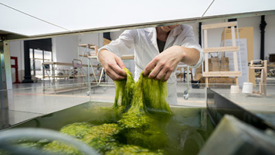 Trending: Algae, Ocean Plastics Pave the Way for More Sustainable Consumer Products