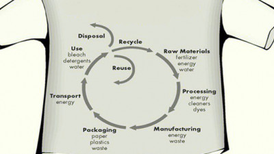 The Role of the Representative Product in Product Environmental Footprinting