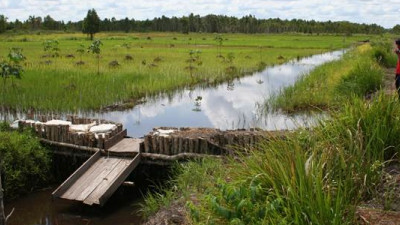 Stakeholder Collaboration Enables Accelerated Progress in APP's Peatland Management Efforts