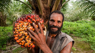 RSPO Introduces Voluntary Advanced Add-On Criteria for Sustainable Palm Oil