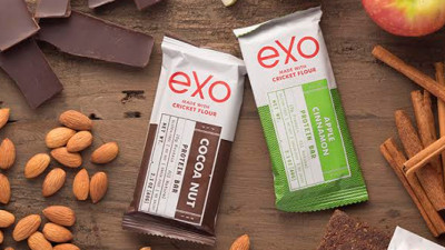 Insect Protein Company Exo Raises $4M in Series A Round