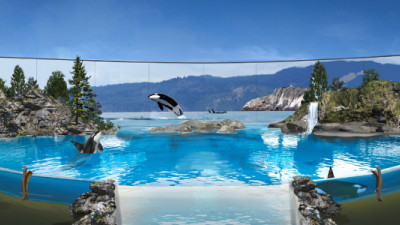 SeaWorld Finally Moving the Needle on Animal Welfare