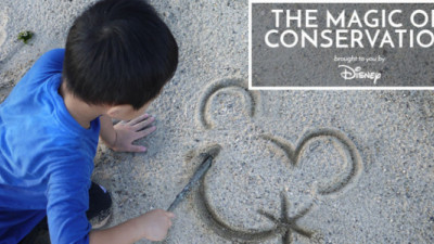 Disney, Recyclebank Extol the 'Magic of Conservation' to Encourage Kids to Recycle, Respect Environment