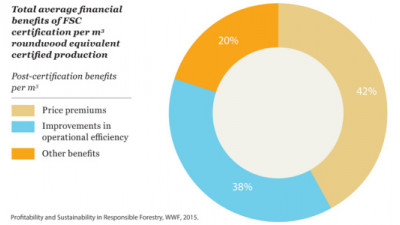 New Study Finds FSC Certification Profitable for Businesses
