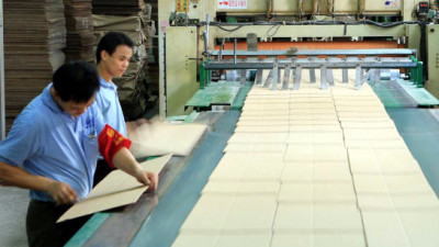New LCA Framework Offers Cutting-Edge Transparency for Forest and Paper Products