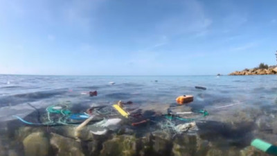 New Film Drives Home Impacts of Single-Use Plastics on Oceans, Wildlife, Humans