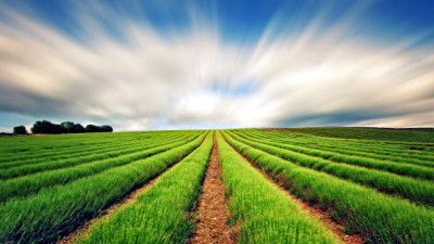 SDG 2: New Agri-Business Alliance Aims to Tackle Global Food Security by 2030