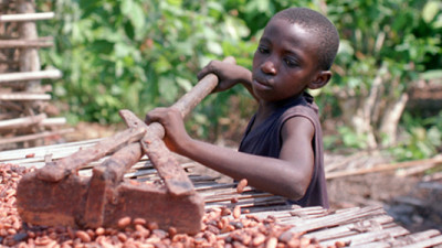 Cargill Partnering to Tackle Child, Forced Labour in Cocoa Supply Chain