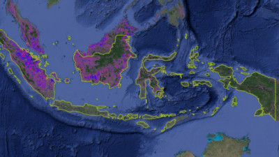 The Business Case for One Map in Indonesia