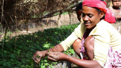 Nespresso Announces Progress, New Investments in Support of Coffee Farmers in Africa