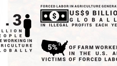 KnowTheChain Taking Food, Beverage Brands to Task for Failing to Address Forced Labor Risks