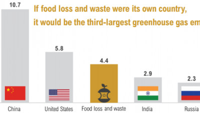 Champions 12.3 'Progress' Report Details Why We Must Target, Measure, Act on Food Waste