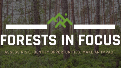 Fortune 500 Companies Join AFF, GreenBlue on Forest Sustainability Tool