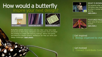 MCAD Offering Free Online Biomimicry Design Course