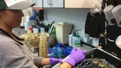 Trending: New Partnerships for Unifi, Kimberly-Clark, North Face To Eradicate Plastic Waste