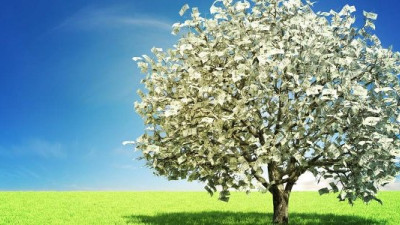 Show Me the Money: Sustainability and Financial Outperformance