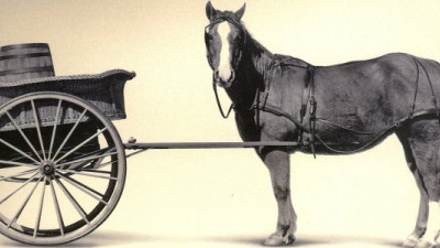 Putting the Cart Before the Horse? Five Anecdotes About Sustainable Business Metrics