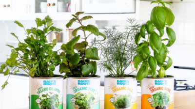 Back to the Roots, Whole Foods Partner to Grow Indoor Gardening Movement