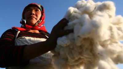 adidas Group Exceeds 2014 Better Cotton Target