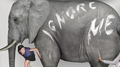 Sustainability Context: The Elephant Is the Room