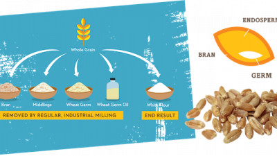 Back to the Roots Launches 100% Stoneground Organic Breakfast Cereal