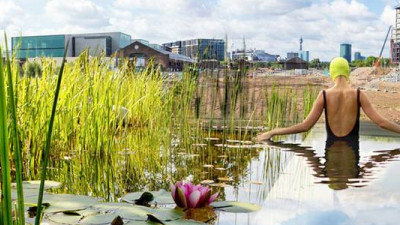 Londoners Will Soon Have a Freshwater Swimming Pool Cleaned by Plants, Not Chemicals