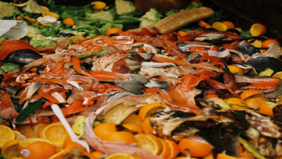 G20: Food Waste An 'Enormous' Global Concern