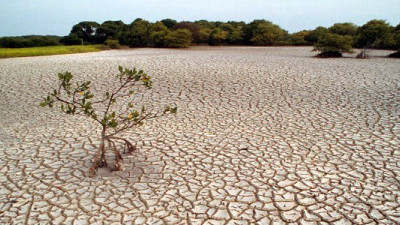 COP21, Global Inequality, Resource Scarcity Among 15 'State of Play' Sustainability Trends