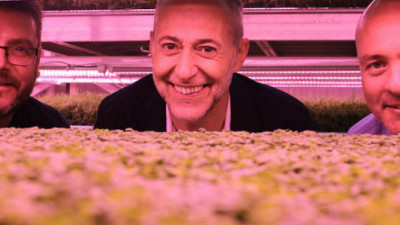 London's First Subterranean Farm Bringing Its Sustainable Produce to Market