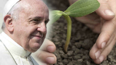 The Best Quotes (and Key Themes) from the Pope's Environmental Manifesto: Part II
