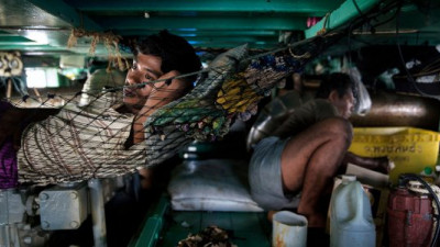 NGOs React to Reports Revealing Modern-Day Slavery in Palm Oil, Seafood Industries