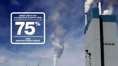 Domtar Leads Pulp and Paper Industry in Self-Generated Energy